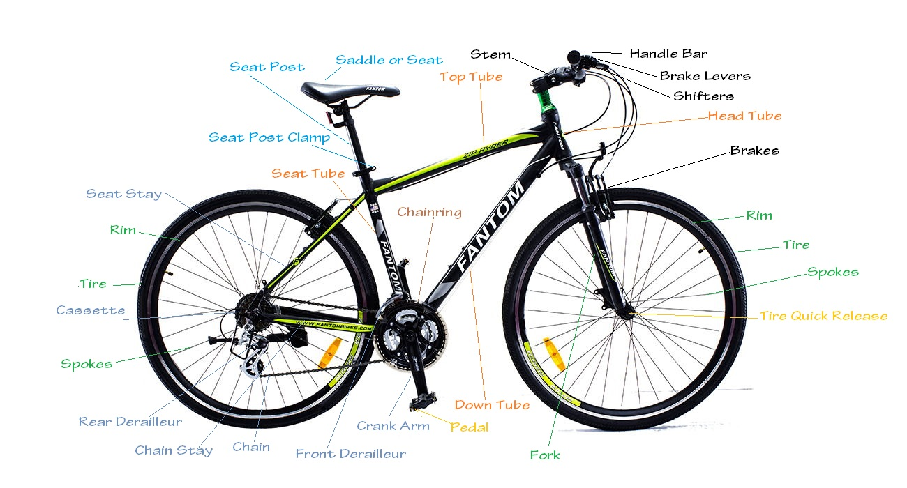 Decoding Bicycle Anatomy - Pedalsaddle